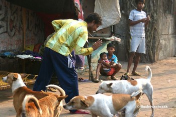 Sushovanbasak_1280px-A_man_playing_with_his_pet_beside_Balananda_Brahmachari_Sebayatan_-_105-2_Raja_Dinendra_Street_-_KolkataP1080609