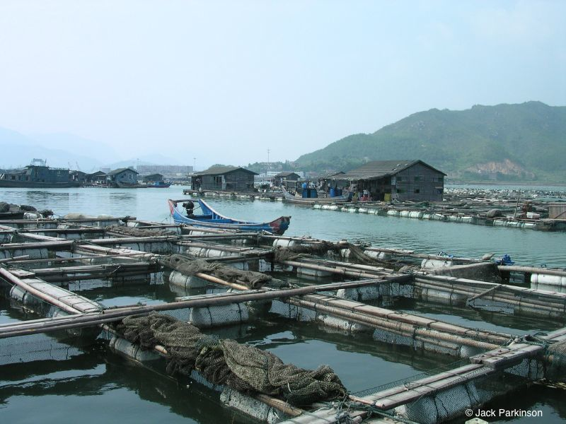 Aquaculture_in_Lo-nguong